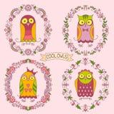 Owlset Stockbild