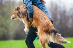 Owner carryng her dog on frisbie show Stock Photo