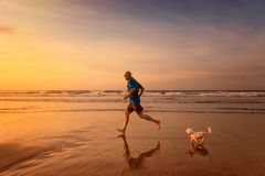 Owner and dog are running at the beach in sunset time. Owner and maltese dog are running at the beach in sunset time Stock Photo