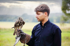 The owner feeds falcon. The owner feeds his falcon dove meat Stock Photo
