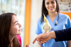 Owner with her pet in vet ambulant Royalty Free Stock Photos