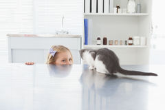 Owner hiding and petting her cat Stock Photos