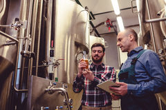 Owner inspecting beer with worker at brewery. Low angle view of owner inspecting beer with worker at brewery Royalty Free Stock Image