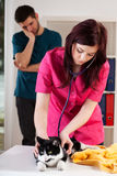 Owner looking at cat's check-up Stock Photo