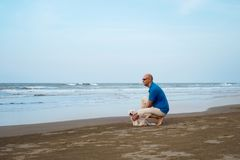 Owner with Maltese dog looking far. At the beach Stock Images