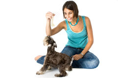 Owner playing with puppy. Pretty owner playing with her puppy stock images