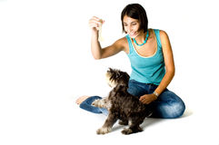Owner playing with puppy. Pretty owner playing with her puppy royalty free stock image