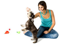 Owner playing with puppy. Pretty owner playing with her puppy stock photos