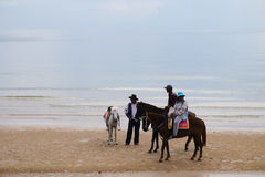 Owners and horses on the beach wait visitors Stock Image