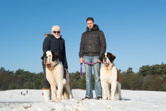 Owners with rescue dog in snow Royalty Free Stock Photos