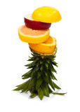owoc 2 wierza Obraz Royalty Free