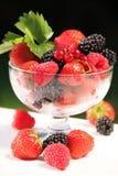 Owoc obrazy stock