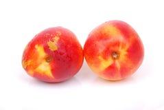 owoc brzoskwinia Zdjęcia Royalty Free