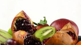 Owoc Dostosowywali życia pojęcie Obraz Royalty Free