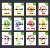 Owoc i jagod etykietki Wręcza patroszony zdrowego, żywność organiczna i napój grępluje set Rolne eco produktów etykietki inkasowe Obrazy Royalty Free