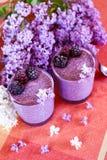 Owoc i jagodowy zdrowy chia pudding zdjęcie royalty free