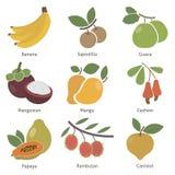 Owoc i jagody ilustracji