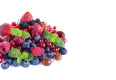 Owoc i jagody na białym tle Dojrzałe czarne jagody, malinki, czerwoni rodzynki, agresty, czernicy i truskawki, Fotografia Stock