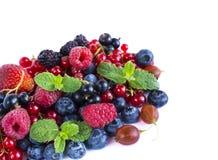 Owoc i jagody na białym tle Dojrzali czerwoni rodzynki, malinki, czarne jagody, truskawki, gooseberrie, czernicy z Obrazy Royalty Free