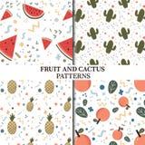 Owoc i kaktusa wzory Fotografia Stock