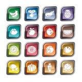 Owoc i warzywo ikony Fotografia Stock
