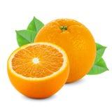 Owoc i warzywo na białym tle Obrazy Royalty Free