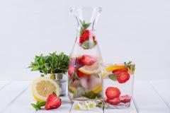 Owoc i ziele natchnąca woda Zimna odświeżająca witaminy detox woda Obrazy Stock