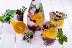 Owoc i ziele natchnąca woda Zimna odświeżająca witaminy detox woda Obraz Stock