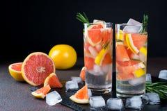 Owoc i ziele natchnąca woda Zimna odświeżająca witaminy detox woda Obraz Royalty Free