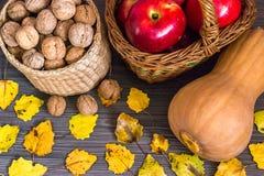 Owoc jesień zdjęcie royalty free