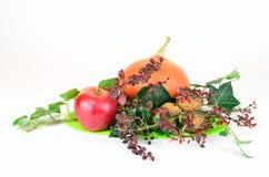 Owoc jesień Obrazy Royalty Free