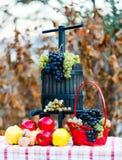 Owoc jesień Zdjęcia Royalty Free