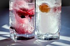 Owoc lód Obraz Stock