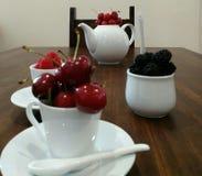 Owoc las Zdjęcie Stock