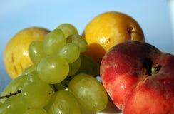 owoc lato Zdjęcie Stock