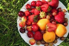 Owoc na bielu talerzu na trawie Obrazy Royalty Free