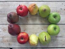 Owoc na stole Obraz Stock
