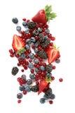 Owoc odgórny widok Obrazy Stock