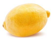 owoc odosobniony cytryny biel Zdjęcie Royalty Free