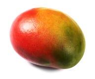 owoc odosobniony mango fotografia stock
