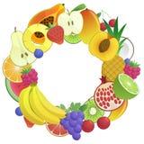 Owoc okręgu sztandar Fotografia Stock