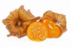 Owoc pęcherzycy pęcherzycy peruviana odizolowywający na białym backgroud Fotografia Stock
