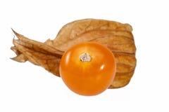 Owoc pęcherzycy pęcherzycy peruviana odizolowywający na białym tle Obrazy Stock