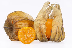 Owoc pęcherzycy pęcherzycy peruviana odizolowywający na białym tle Zdjęcie Stock