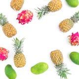Owoc rama z ananasa, mango i smoka owoc na białym tle, Mieszkanie nieatutowy, odgórny widok knedle tła jedzenie mięsa bardzo wiel Zdjęcia Stock