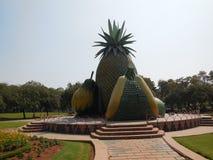 Owoc repliki w ogródzie obrazy royalty free