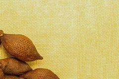 Owoc setu rama na tle żółtego brezentowego dekoracja wystroju podstawy kopii przestrzeni węża Asia Malaysia Thailand Salak owocow obrazy stock