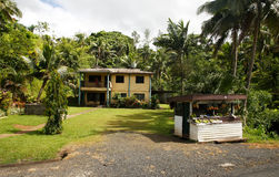 Owoc stoiskowa pobliska droga, Viti Levu, Fiji Obraz Stock