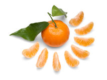 owoc tangerine Fotografia Royalty Free