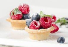 Owoc tortowe i świeże jagody obraz stock
